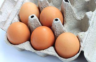 Salmonella and Eggs