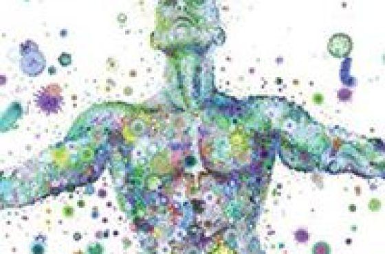 Cómo la microbiota juega un papel central en nuestro bienestar