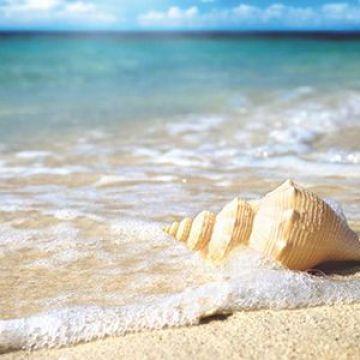 Prácticas Saludables mientras disfrutas de Las Playas