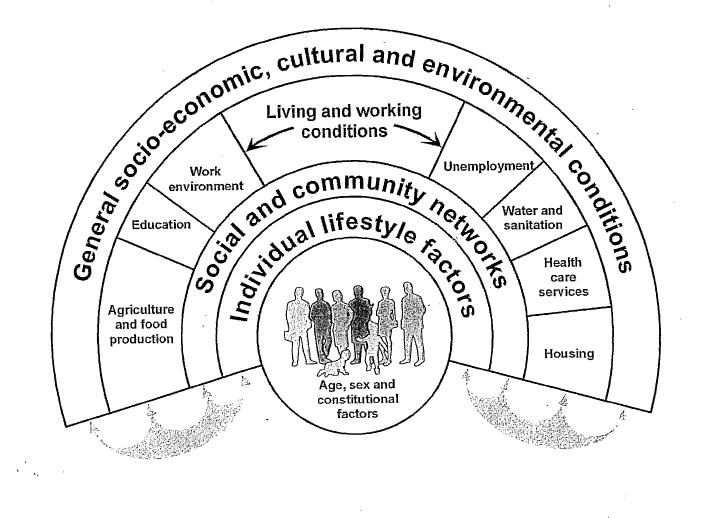 Policies and strategies to promote social equity in health