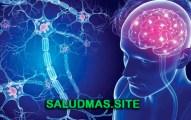 Esclerosis Múltiple Causas Síntomas Tratamiento