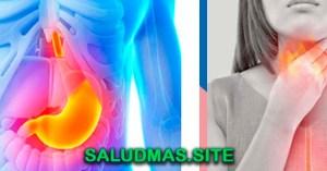 Remedios Caseros Para La Acidez Estomacal Y Reflujo