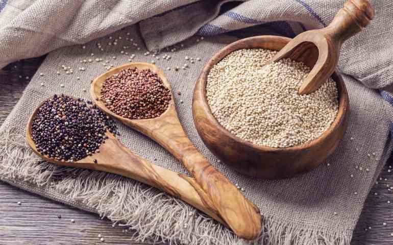 Quinoa: Propiedades, beneficios y preparación