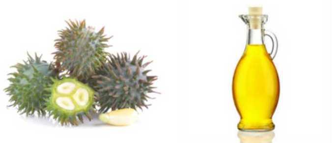 Aceite de higuera: Beneficios del aceite de castor