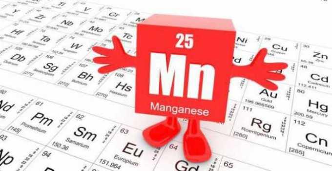 Para qué sirve el Manganeso en el cuerpo humano