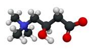 Beneficios y Efectos de la Carnitina