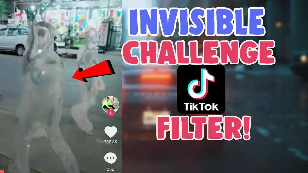 invisible challenge hide me filter tiktok