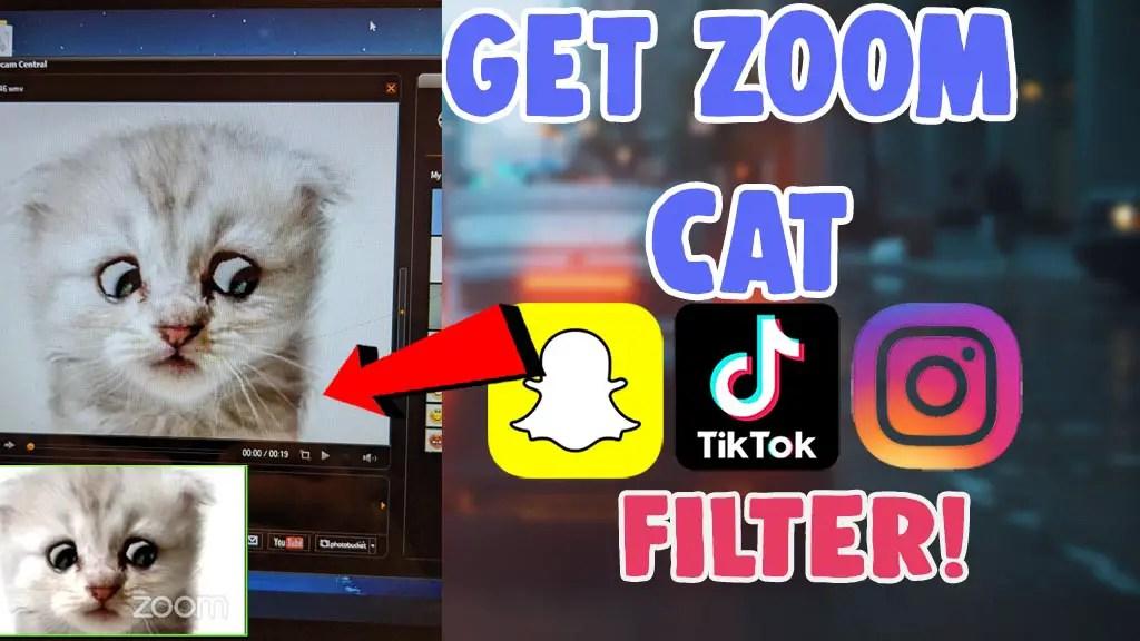 use zoom cat filter instagram tiktok snapchat