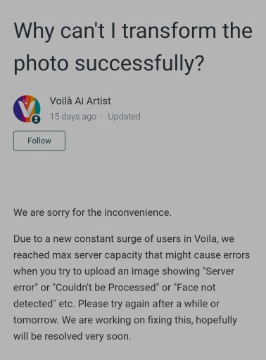 voila ai app not working face not detected