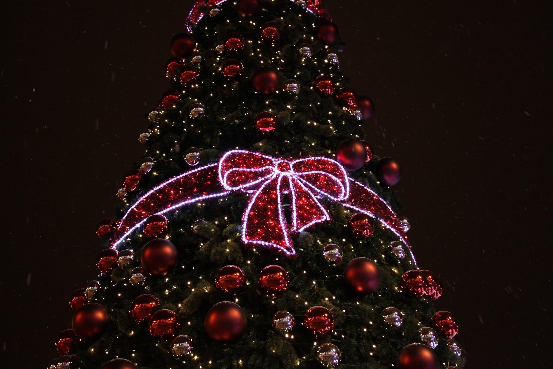 Мэр-эколог Бордо уберет елку, как «мертвое дерево».