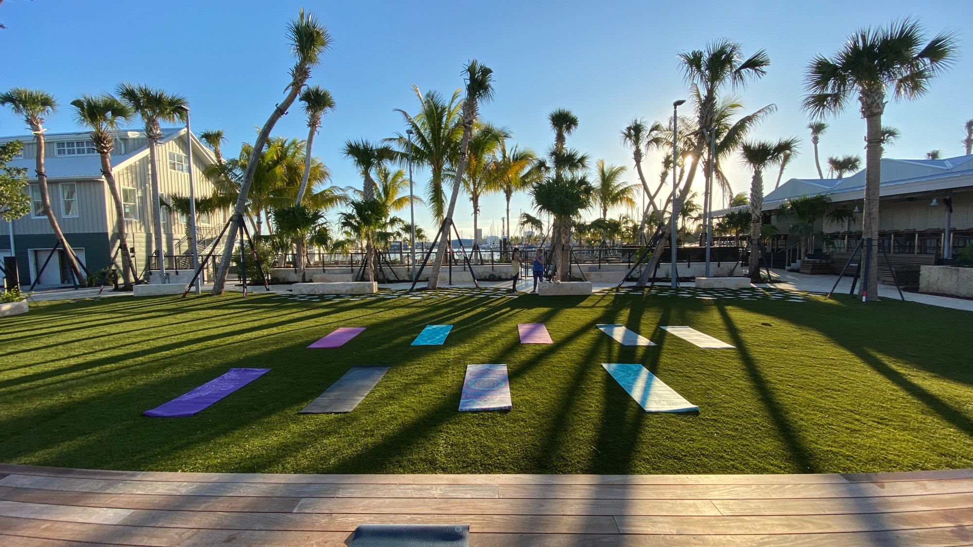 yoga mats on event lawn under palm trees for group yoga classes