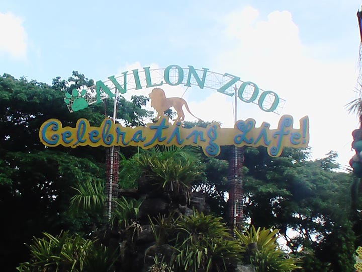 Welcome to Avilon Zoo