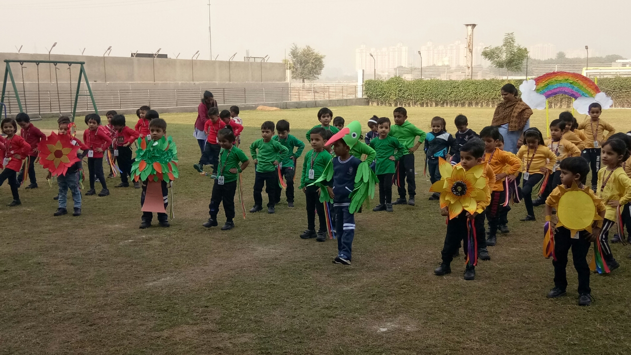Annual Sports Day 2019 for Pre-Primary