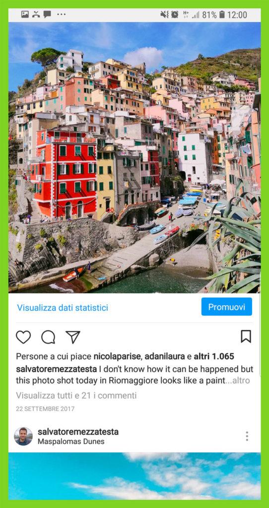 tasso engagement instagram