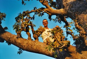 En pleine brousse, dans un baobab...
