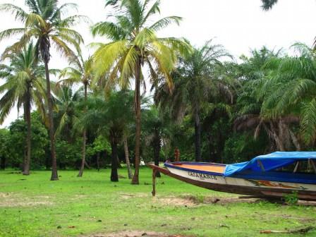 Verte Carabane