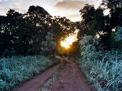 missirah-lever-soleil-brousse-01