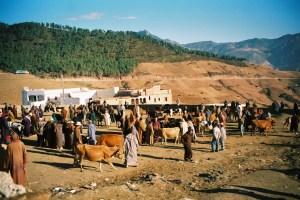 Village du Rif marocain
