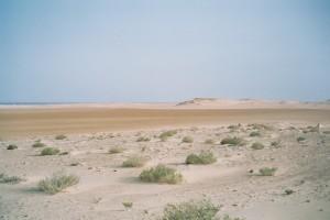 L'entrée du désert mauritanien