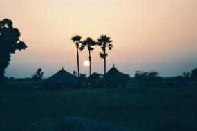 Cases et rôniers au soleil couchant près de Joal