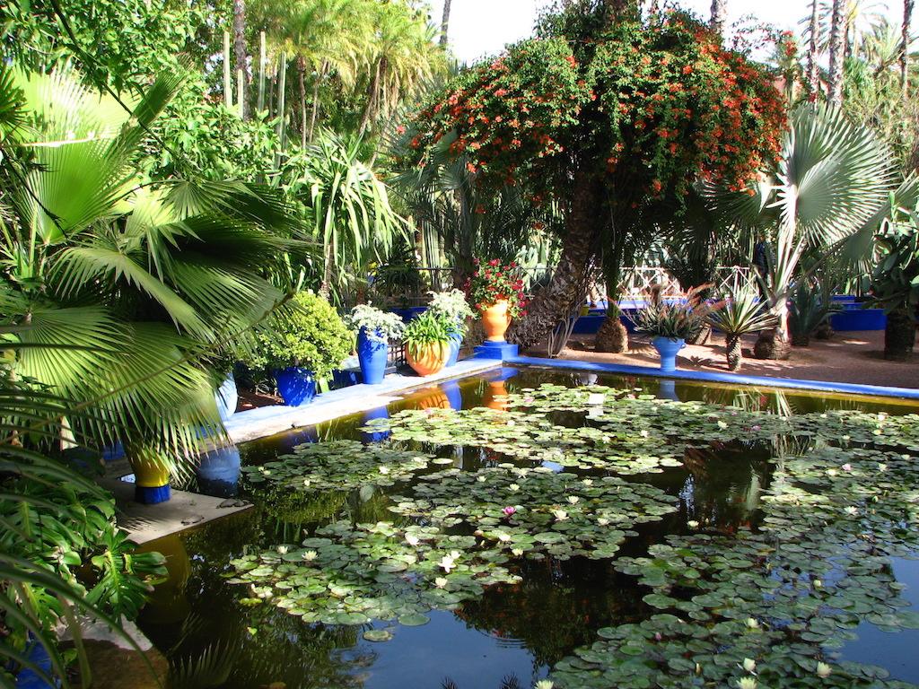 Le Jardin Majorelle Une Oasis Dans Gu Liz Sama Africa