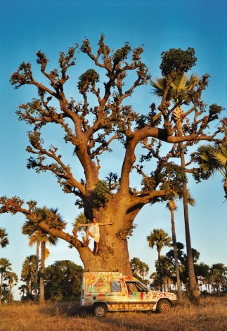 Titine, le baobab... et moi !