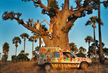 Avec Fifi dans un baobab