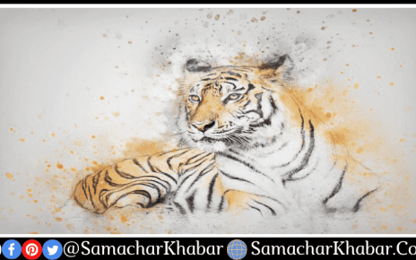 International Tiger Day 2021 Theme, History, Quotes, Facts, Slogan