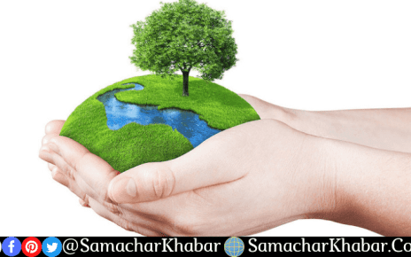 World Nature Conservation Day 2021 Theme, Quotes, History, importance