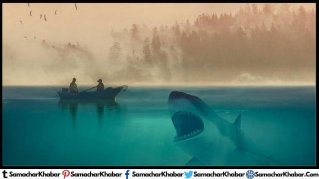 व्हेल शार्क की आबादी 75 साल में 63% घटी