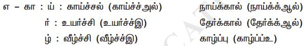 Samacheer Kalvi 11th Tamil Guide Chapter 2.7 புணர்ச்சிவிதிகள் - 3