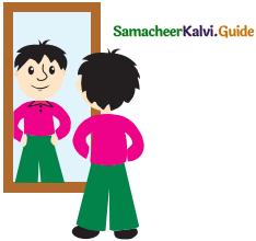 Samacheer Kalvi 5th Maths Guide Term 1 Chapter 1 Geometry 13
