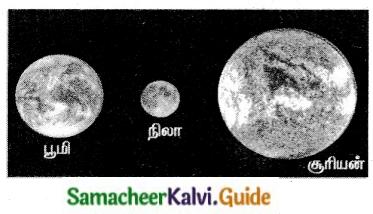 Samacheer Kalvi 6th Tamil Guide Chapter 2.1 சிலப்பதிகாரம் 1