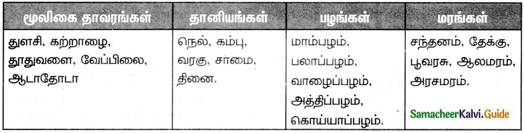 Samacheer Kalvi 6th Tamil Guide Chapter 2.1 சிலப்பதிகாரம் 2