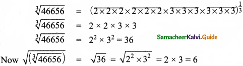Samacheer Kalvi 8th Maths Guide Answers Chapter 1 Numbers Ex 1.5 13