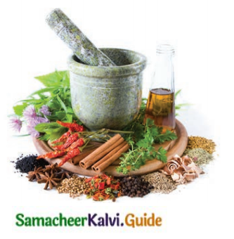 Samacheer Kalvi 8th Tamil Guide Chapter 3.5 எச்சம் 2