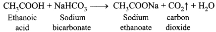 Samacheer Kalvi 10th Science Guide Chapter 11 Carbon and its Compounds 9