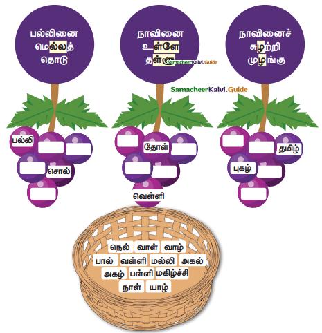 Samacheer Kalvi 4th Tamil Guide Chapter 6 முயல் அரசன் - 7