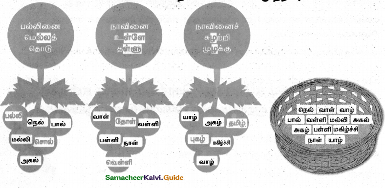 Samacheer Kalvi 4th Tamil Guide Chapter 6 முயல் அரசன் - 8