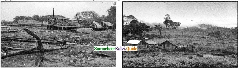 Samacheer Kalvi 4th Tamil Guide Chapter 8 விடியும் வேளை - 2