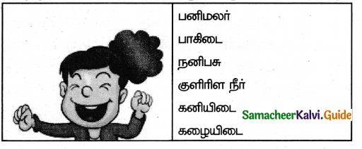 Samacheer Kalvi 5th Tamil Guide Chapter 1.4 மரபுச்சொற்கள் - 7