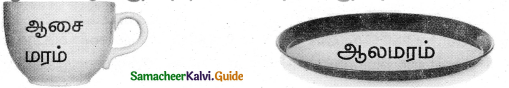 Samacheer Kalvi 5th Tamil Guide Chapter 5.4 இணைப்புச்சொற்கள் - 10