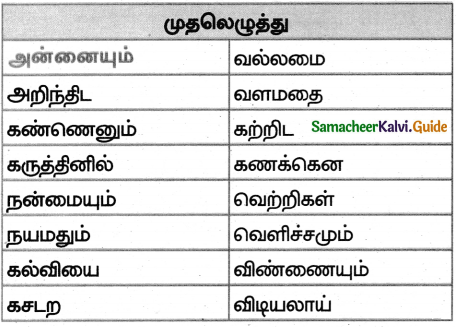 Samacheer Kalvi 5th Tamil Guide Chapter 8.4 மயங்கொலிச் சொற்கள் - 3