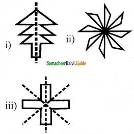 Samacheer Kalvi 6th Maths Guide Term 3 Chapter 4 Symmetry Ex 4.2 8