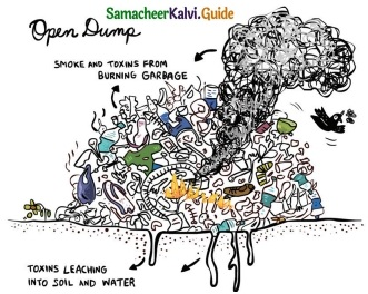 Samacheer Kalvi 6th Science Guide Term 3 Chapter 4 Our Environment 2