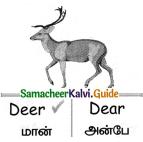 Samacheer Kalvi 4th English Guide Term 1 Prose Chapter 2 Do it yourself 17