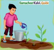 Samacheer Kalvi 4th English Guide Term 1 Prose Chapter 2 Do it yourself 31