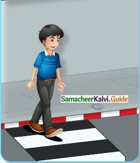 Samacheer Kalvi 8th English Guide Prose Chapter 5 Being Safe 1
