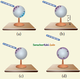 Samacheer Kalvi 12th Physics Guide Chapter 1 Electrostatics 49