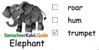 Samacheer Kalvi 4th English Guide Term 3 Supplementary 1 The mistaken plate 10